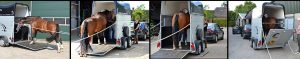 Cursusdag: probleemloos trailerladen @ Manege De Ruif | Amsterdam | Noord-Holland | Nederland